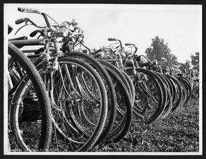 Numerose biciclette in un campo